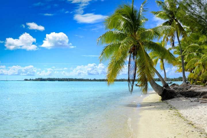 Bora Bora Alfredo en Flickr