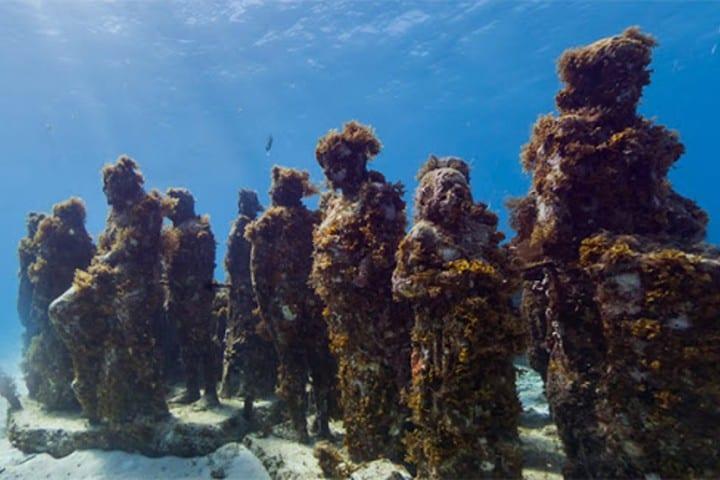 Bucea con google. Créditos underwater