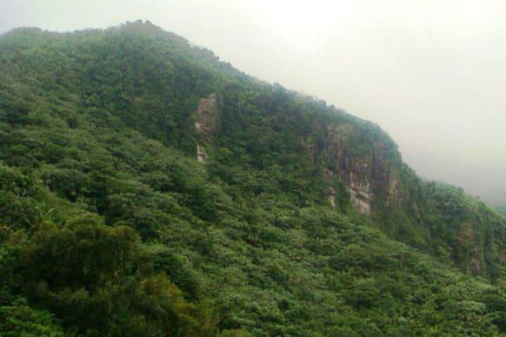 El yunque. Puerto Rico. Foto PR 4