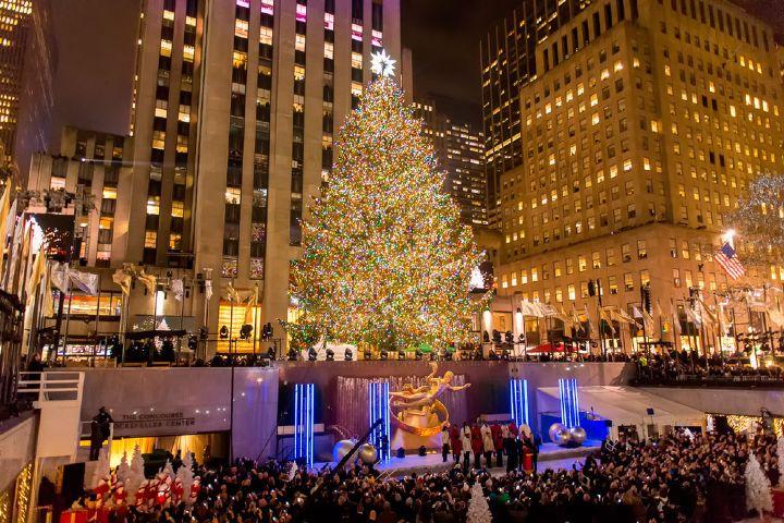 Gurú de Viajes Foto: ¿Qué significa el árbol de navidad?