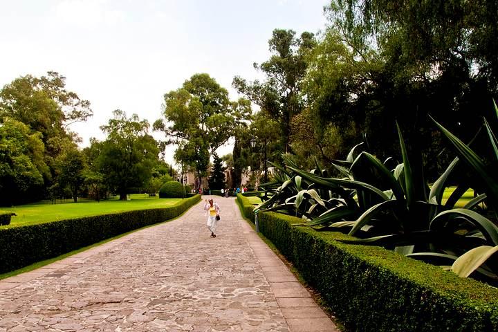 Jardin Museo