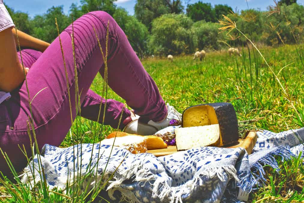 Portada. Queso de oveja en Tequisquiapan. Querétaro. Foto Pradales, Queso de Oveja Gourmet 1