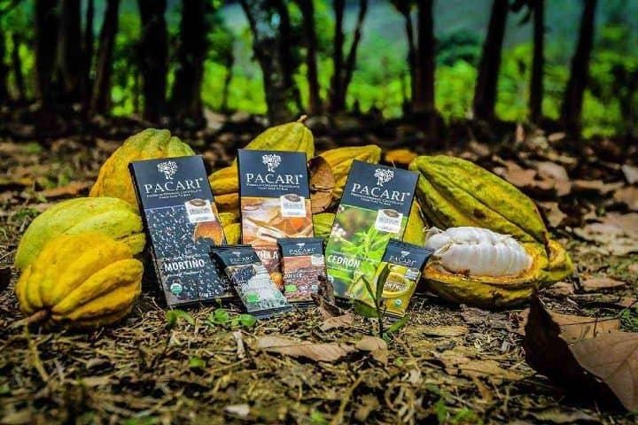 Ruta del Chocolate en Tabasco. Foto: Diario Ecooss Y Expresión