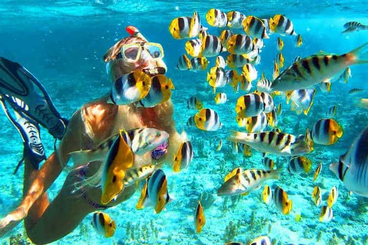 Snorkeling en Bora Bora Trev and Chels