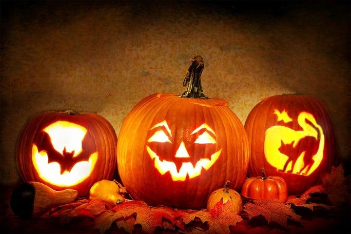Tradicionales calabazas de halloween. Foto JillWellington
