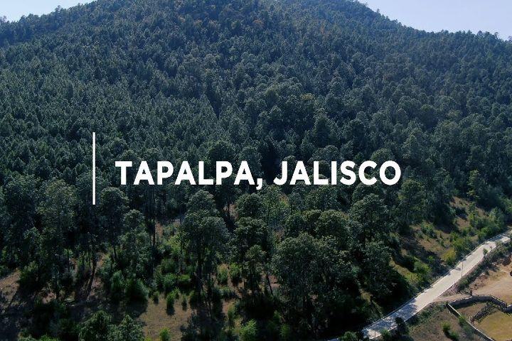Wiggot Foto: ¿Qué hacer en Tapalpa Jalisco?
