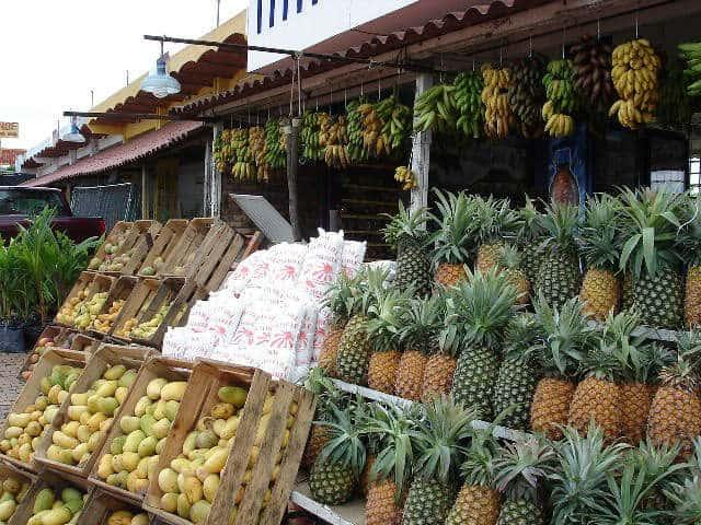 Frutas de San Blas Nayarit Foto Ramiro López
