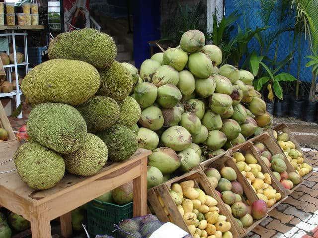 Yaka y otras frutas. San Blas Nayarit Foto Ramiro López