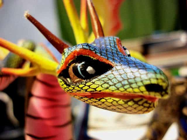 alebrige dragon foto Amado Demesa