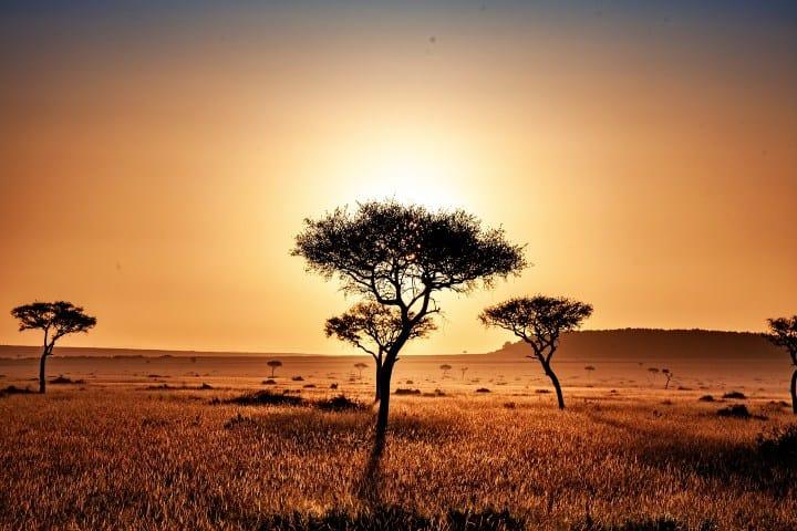 https://elsouvenir.com/wp-content/uploads/2014/10/kenya-4119572_1920-1.jpg