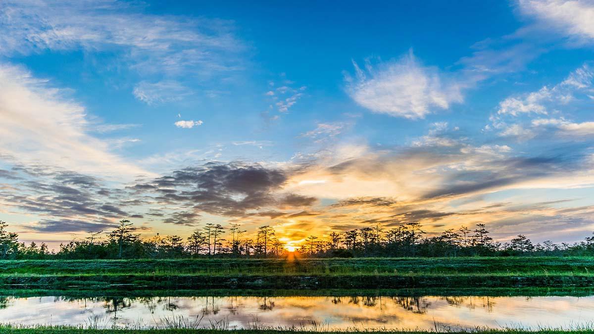 puesta de sol en Everglades Florida. Foto. FunkWD