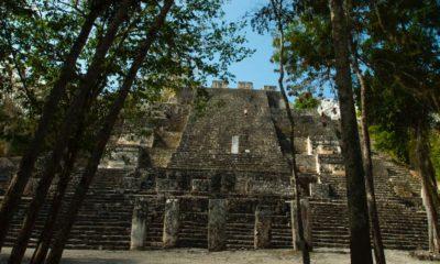 Calakmul. Foto: aurora ibarra