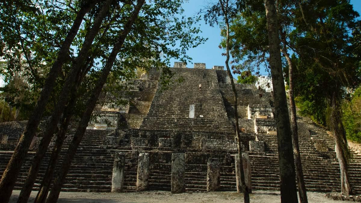 Calakmul. Foto aurora ibarra