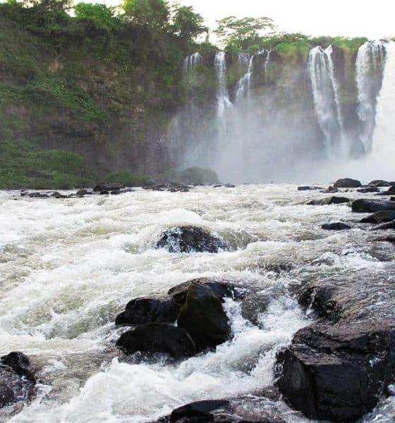 Cascada de Eyipantla. Foto: costaveracruz.net