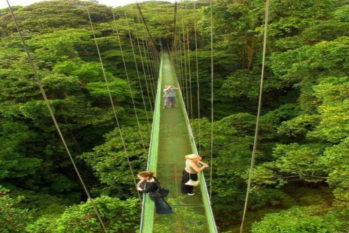 Ecoturismo en Monteverde en Costa Rica. Foto Valeria Martinez.