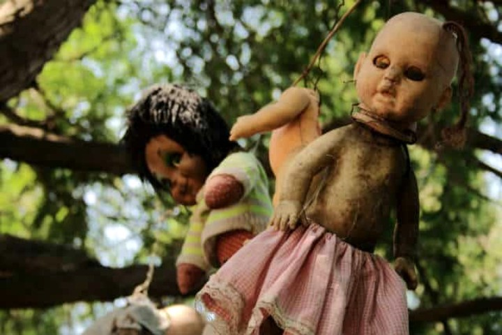 Isla de las muñecas, Xochimilco. Foto Archivo