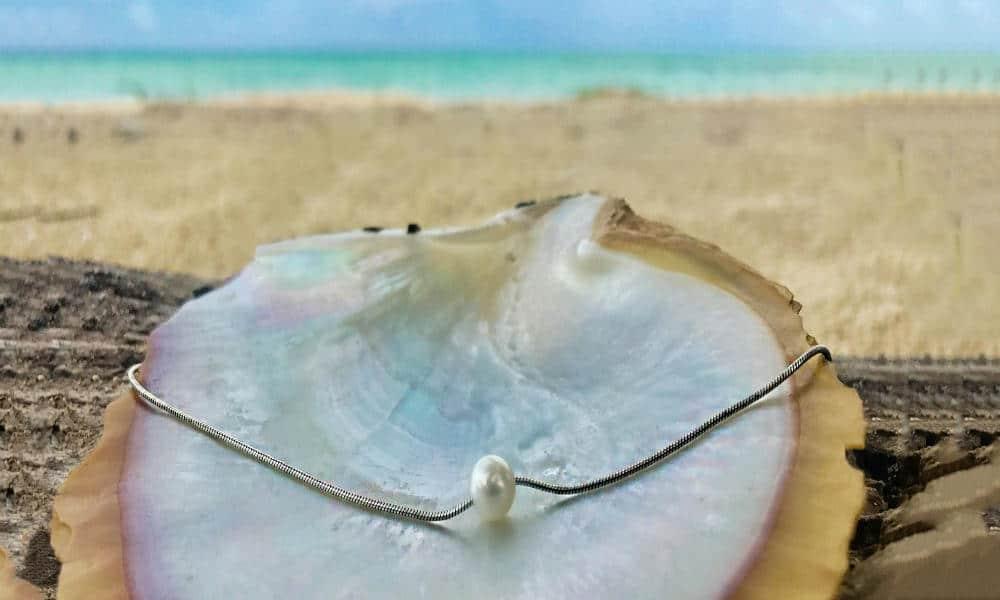 Portada.Granja de Perlas en Cozumel.Foto.Maya Luxe