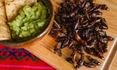 Portadas. Tour gastronómico en la CDMX. Foto: Universidad del Claustro de Sor Juana