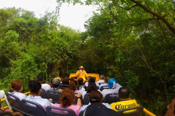 Recorrido en Sendero Yacartía en Iguazú. Foto Archivo.
