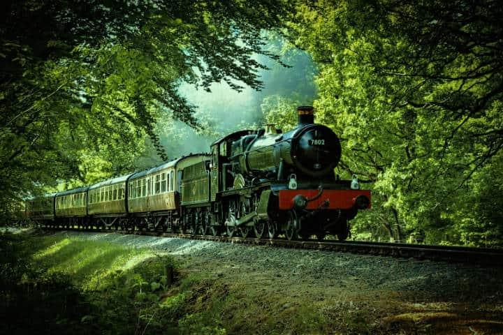 Tren rojo y negro pasando através de bosque. Inglaterra. Foto Denis Chick 2