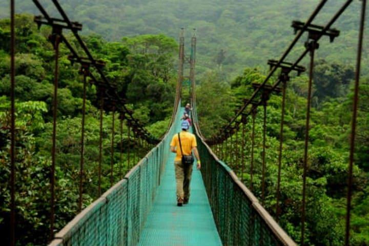 Puente colgante. Foto Archivo.