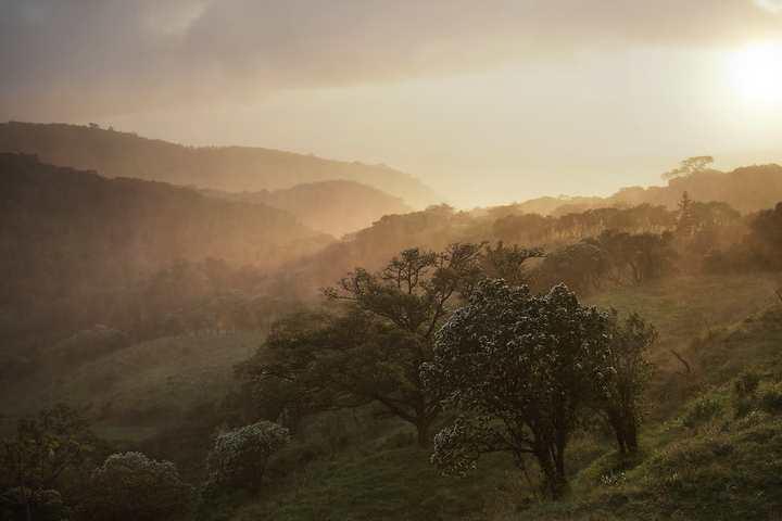 Ecoturismo en Monteverde en Costa Rica