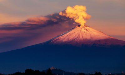 Hola Zacatlán Foto: Amecameca, más que árboles de navidad