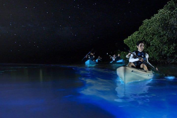 Kayak en la Playa Mosquito.Foto.Treechugger.6