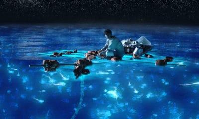 Portada.Bioluminiscencia en Puerto Rico y las Islas Maldivas.Foto.Sociedad Geográfica de las Indias