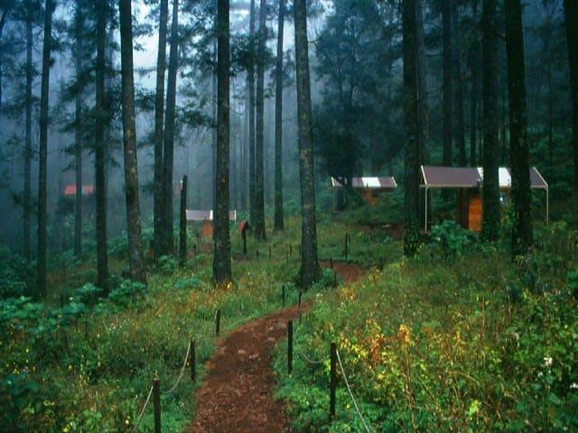 Resultado de imagen para Parque Natural El Chico