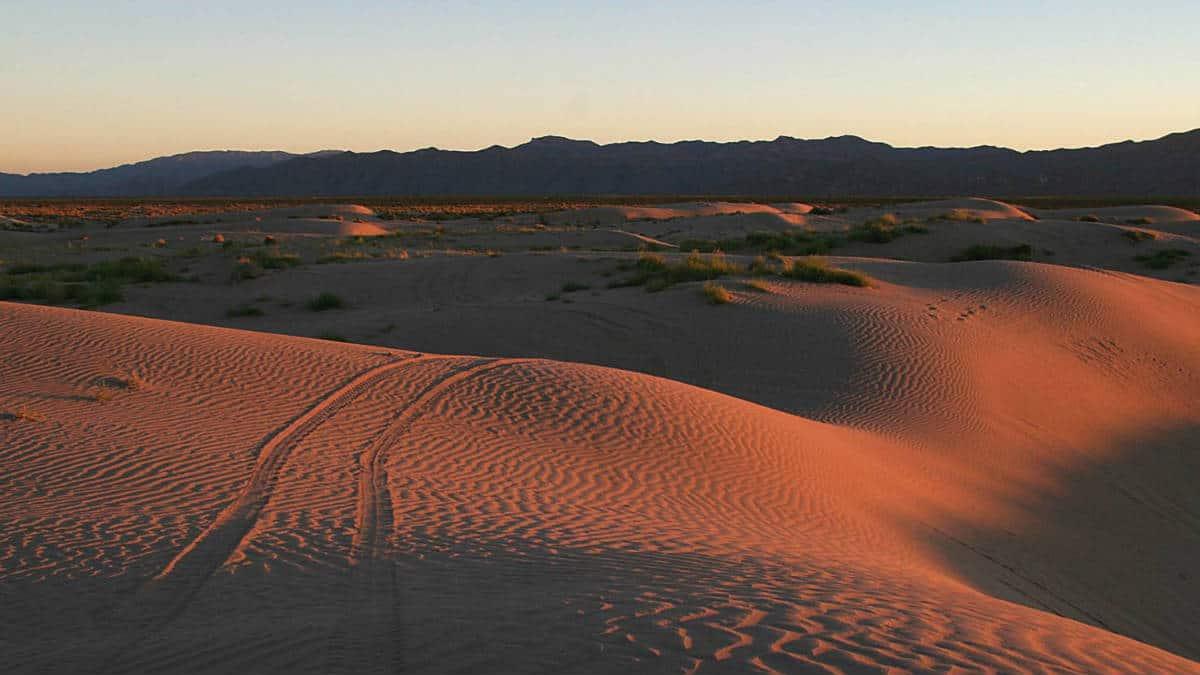 Las dunas. Imagen: Coahuila. Archivo