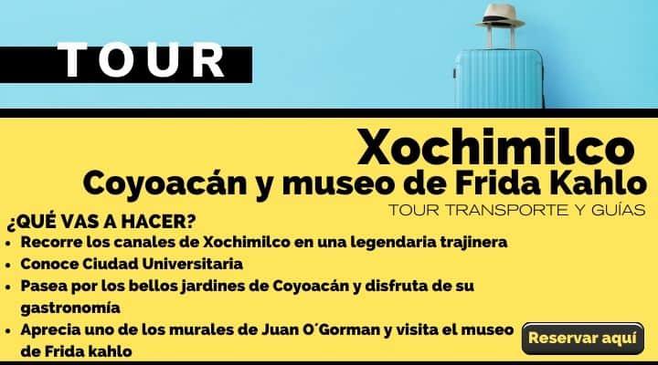Tour Xochimilco, Coyoacán y museo Frida Kahlo. Arte El Souvenir