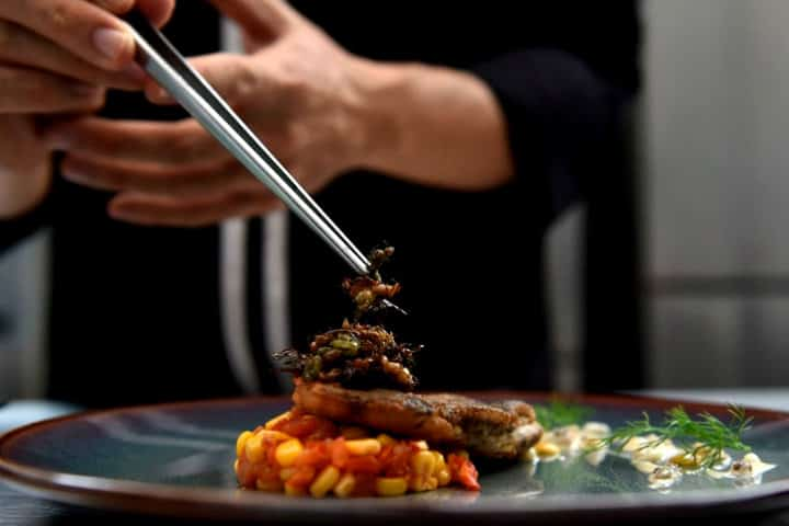 El comer insectos como los chapulines es una tendencia gourmet que crece en el mundo Foto Conclusión
