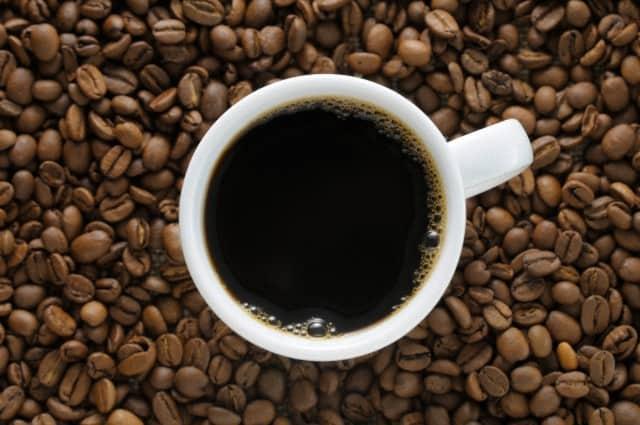cafe-pluma-oaxaca-9-640px-425px
