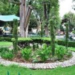xochimilco-turimo-02-640px-428px