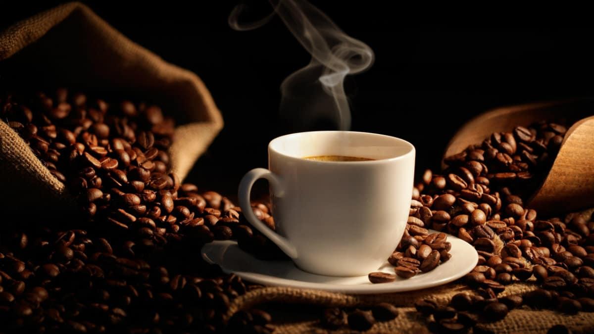 cafe pluma portada