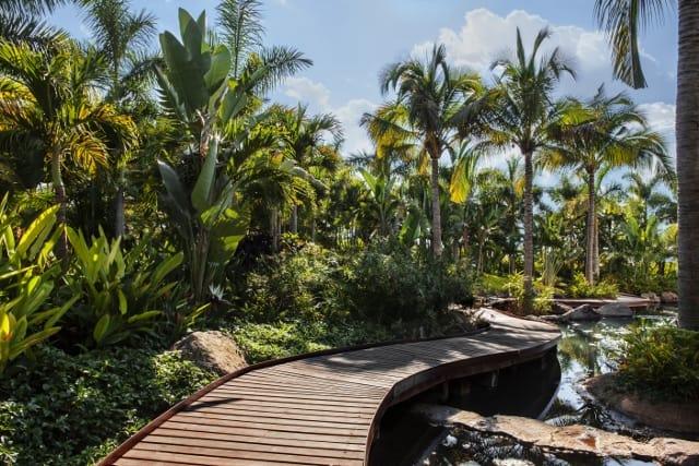 Jardines de m xico un encuentro con la naturaleza for Jardines mexico
