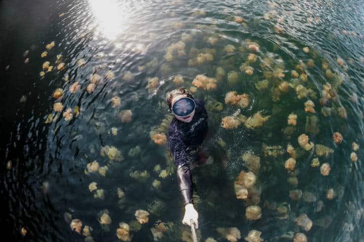 Copia de Lago de las Medusas Foto Medium