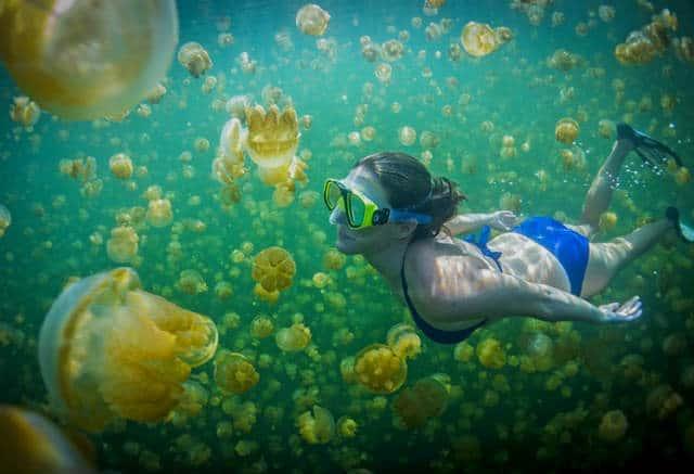 lago-medusas-14