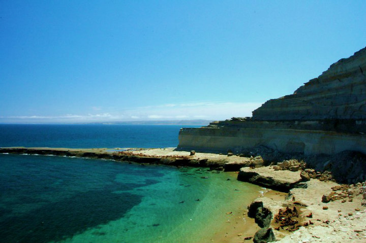 Por donde veas la Península Valdés, es un lugar precioso Foto Pantera Rosa