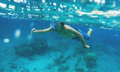 Portada Snorkeling en Huatulco. México. Foto. Nick 1