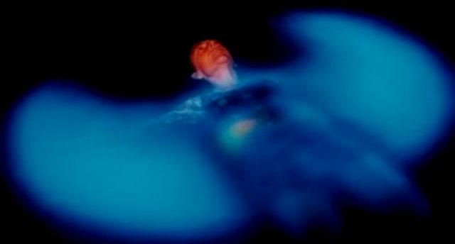 Nadando en medio de la Bioluminiscencia