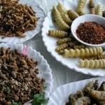 insectos comestibles en mexico