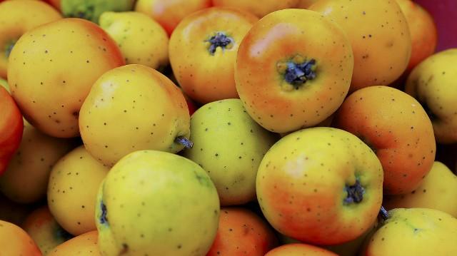 El color de la gastronomía. Foto: Archivo