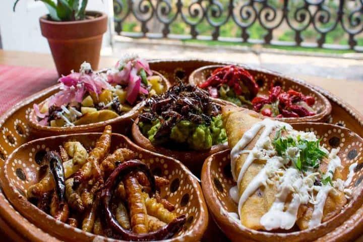 Insectos comestibles. Foto: selecciones.com.mx