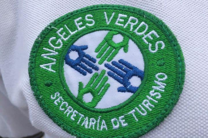 Logo de los Ángeles verdes. Foto: tvpacifico.mx