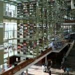 biblioteca vasconcelos libro