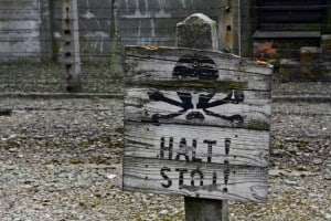 Anuncio Auschwitz Defenestre