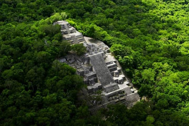 Calakmul.Foto.udgtv.24