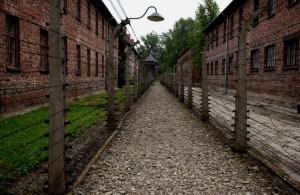 Cuartos Auschwitz José Miguel Martinez